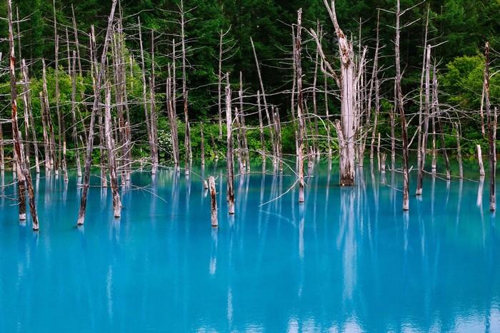 Hồ Biei có màu xanh kỳ lạ nổi tiếng toàn thế giới