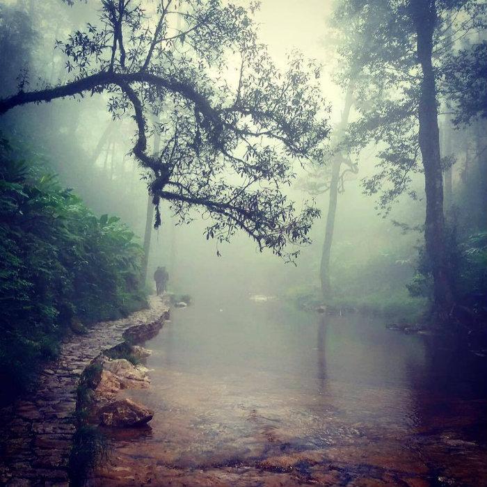 Con suối nhỏ chảy quanh bản làng Sapa