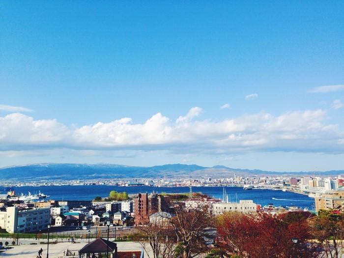 Vịnh Hakodate nhìn từ trên cao
