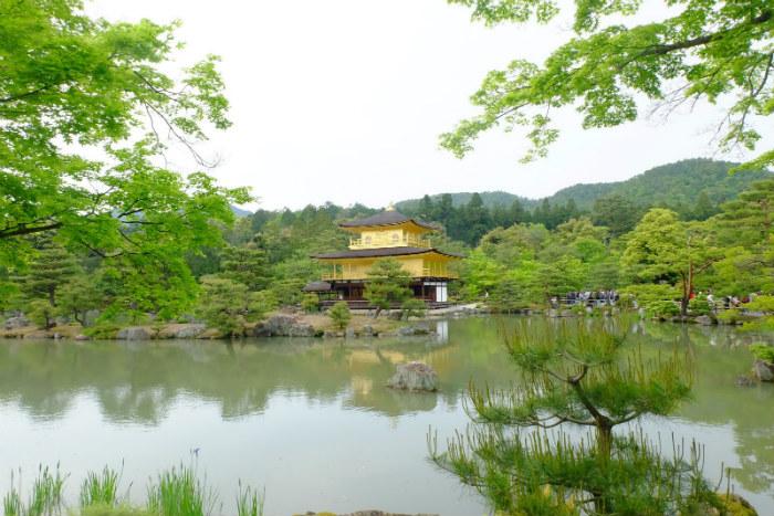 Ngôi chùa vàng tuyệt đẹp trong cảnh sắc sơn thủy hữu tình