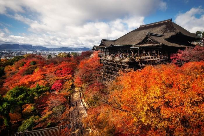 Phong cảnh bên chùa Kiyomizu vào mùa thu lá đỏ