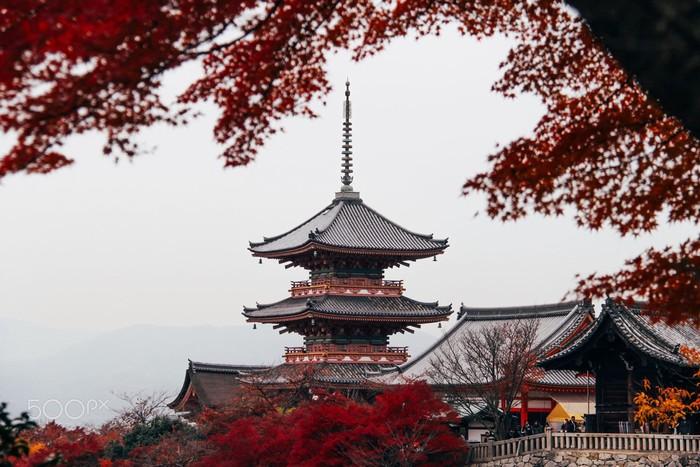 Kiến trúc mang vẻ đẹp cổ kính và trác tuyệt của ngôi chùa