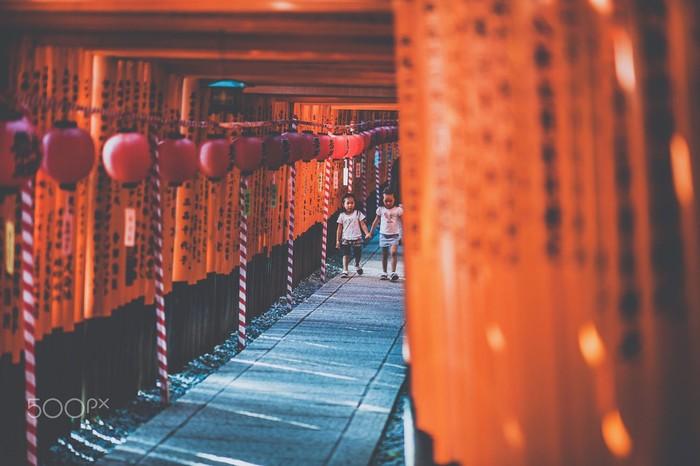 Con đường đi qua hàng ngàn chiếc cổng Torii đỏ sặc sỡ