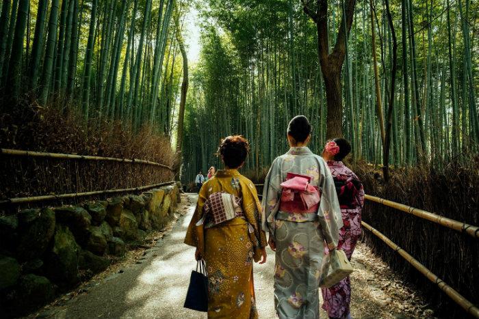 Những bộ Kimono truyền thống trong rừng trúc xanh rì