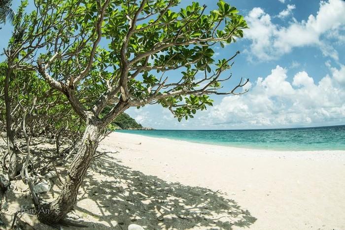 Biển xanh cát trắng ở đảo Hòn Cau vẫy gọi du khách