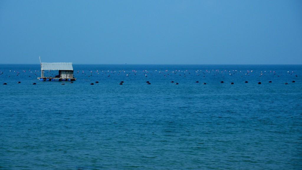 Chòi nhỏ giữa biển khơi
