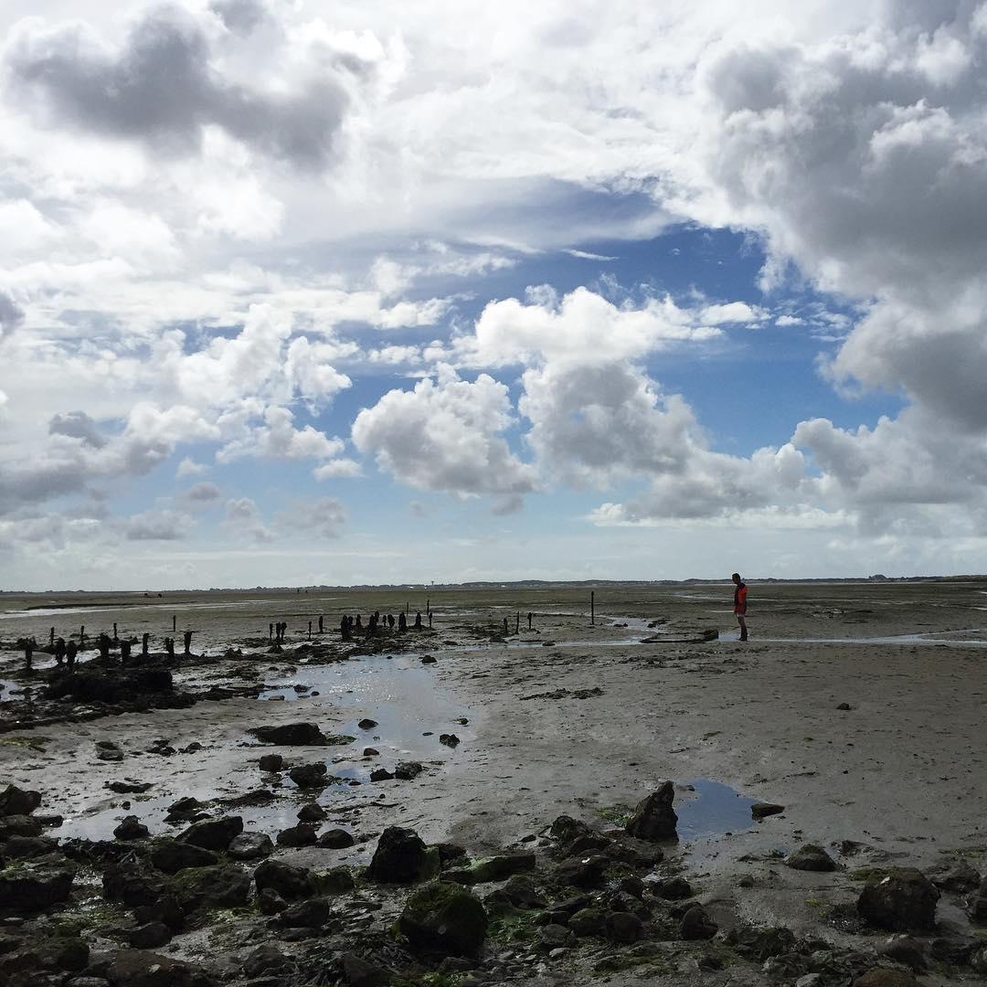 Khi thủy triều xuống thấp tại Le Passage du Gois