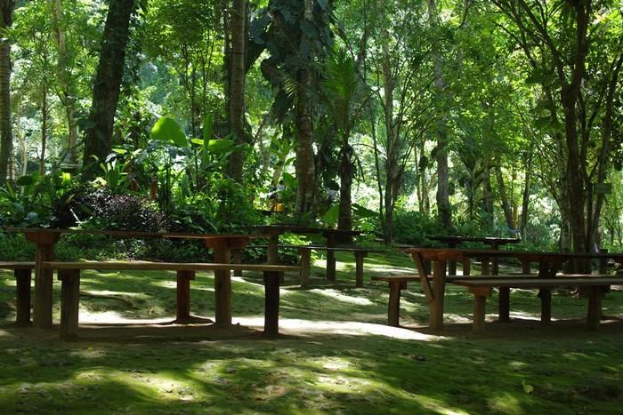 Thác Kuang Si cách trung tâm Luang Prabang khoảng 30 km.