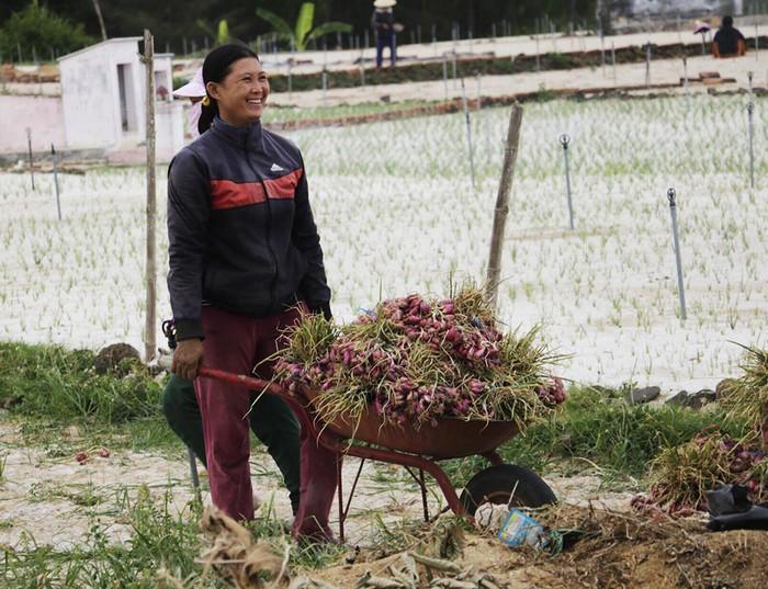 Ước tính cứ mỗi ha gieo trồng, nông dân thu hoạch được khoảng 6 tấn củ hành, giá bán cho thương lái khoảng 20.000 đồng/kg hành tươi. Sau khi mua, thương lái sẽ chuyên chở về đất liền, phơi khô và bán với giá cao hơn nhiều lần.