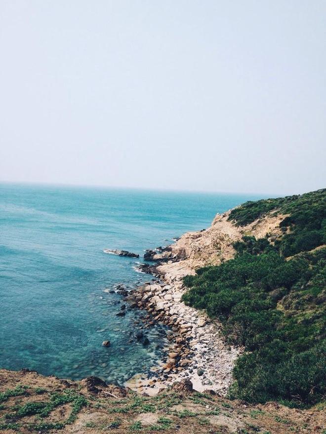 """Cù lao Mái Nhà - """"hoang đảo Robinson"""" của xứ hoa vàng cỏ xanh Phú Yên"""