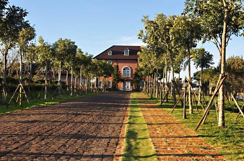 Dalat Milk Farm còn có những tòa nhà như bước ra từ bộ phim thần thoại