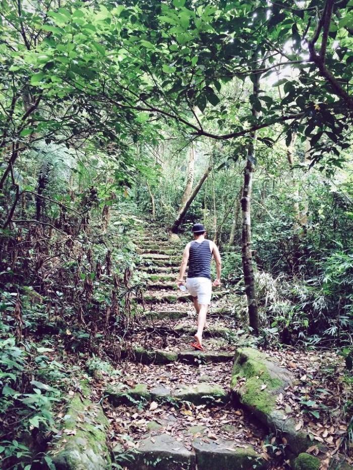 Rồi người ta lại thong dong trên những lối mòn thoai thoải dẫn vào rừng - Ảnh: Sưu tầm