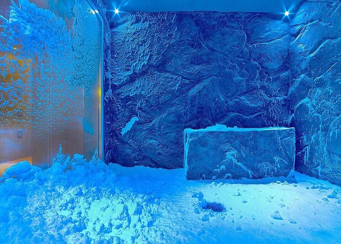 Snow Grotto, Viking Cruises