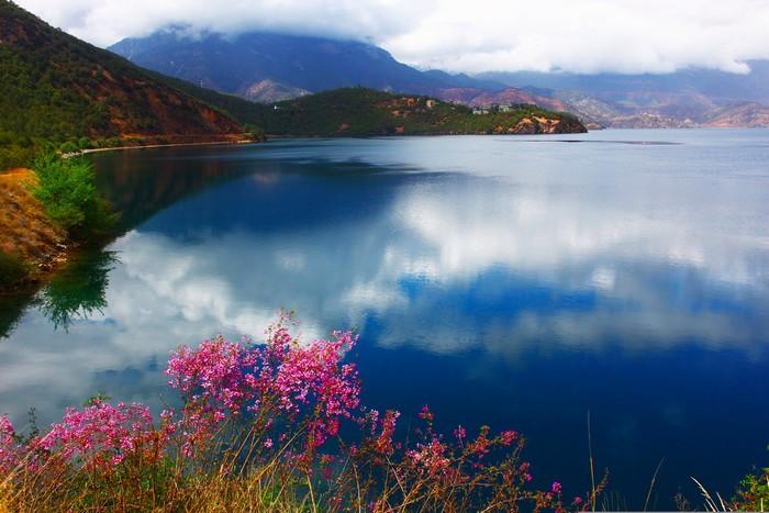Hồ Lugu thơ mộng với sắc anh đào ven bờ