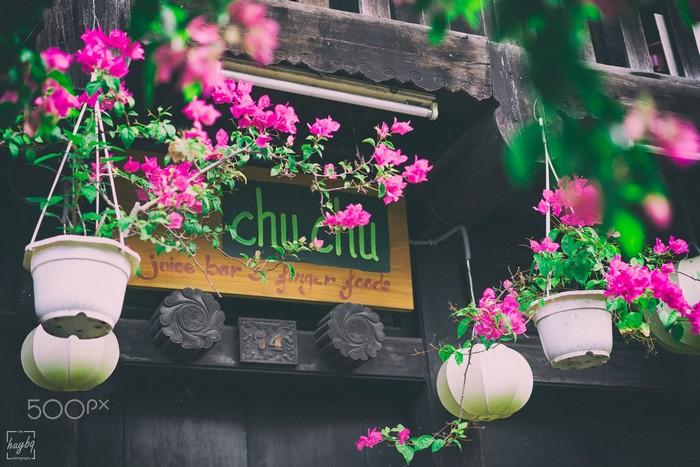 Một góc cà phê Chuchu dưới giò hoa giấy hồng tươi