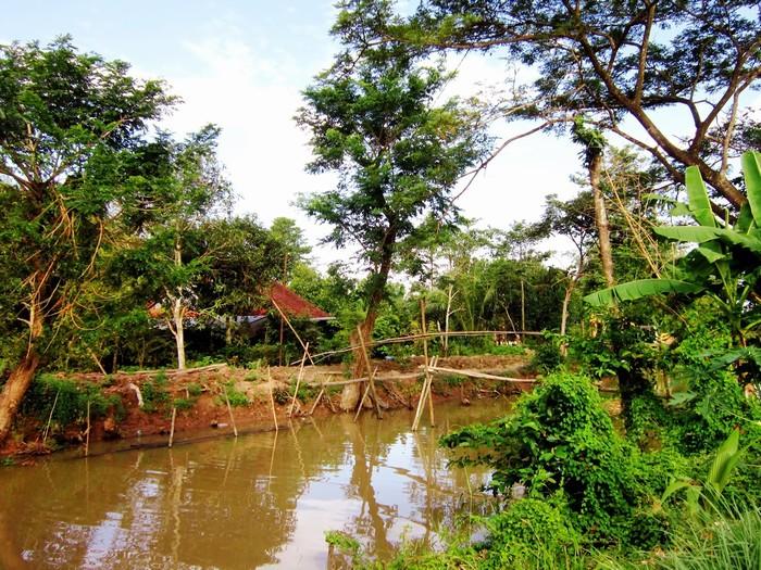 Hình ảnh đặc trưng của miền Tây sông nước