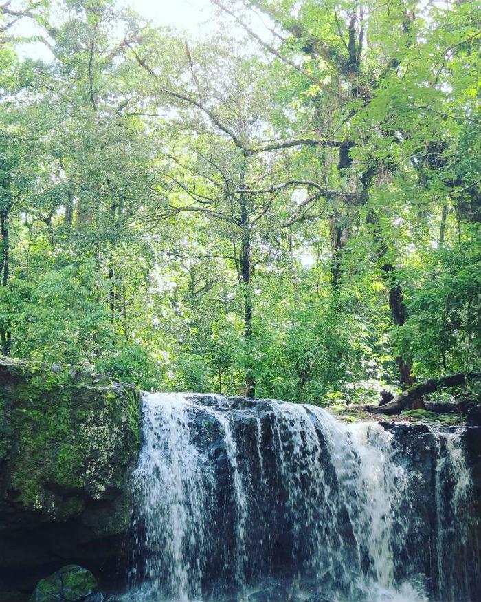 Lắng nghe tiếng thở của thiên nhiên tại Vườn Quốc gia Bù Gia Mập