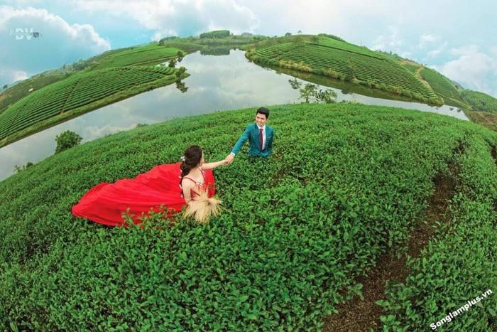 Đảo chè - nơi đôi lứa đắm chìm trong khoảnh khắc ngọt ngào lãng mạn - Ảnh: Sưu tầm