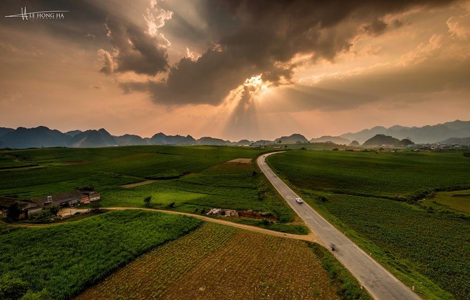 Xanh mướt đồng cỏ Mộc Châu
