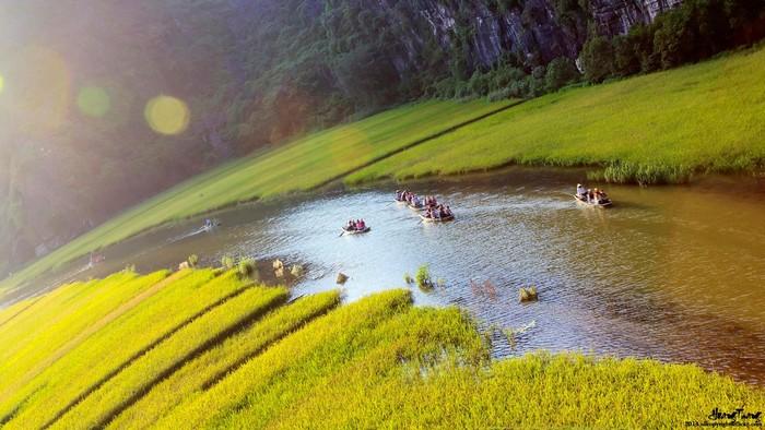Để cảm nhận vẻ đẹp hoàn hảo của Tam Cốc mùa lúa chín