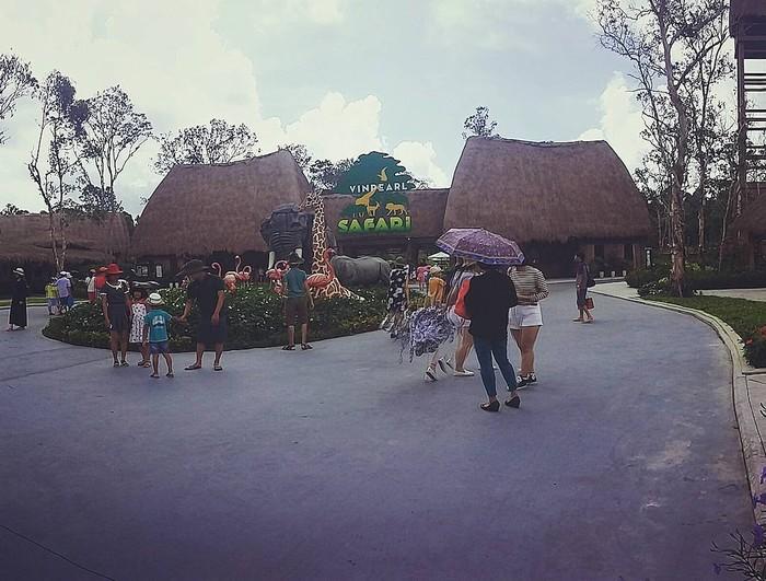 Đến Vipearl Safari tham quan vườn thú lớn nhất