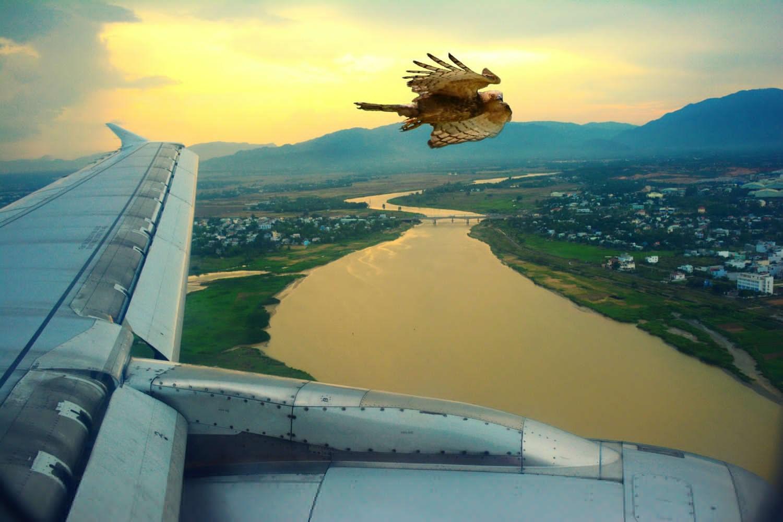 Đi máy bay