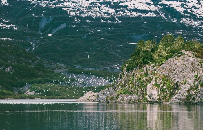 Chỉ trong 5 ngày mà tôi được tận hưởng biển xanh mát lành, những phong cảnh núi non phản chiếu trên mặt hồ siêu đẹp, cho đến Bảo tàng phía Bắc, hay ngắm nghía thỏa thích sư tử biển ở phía Nam