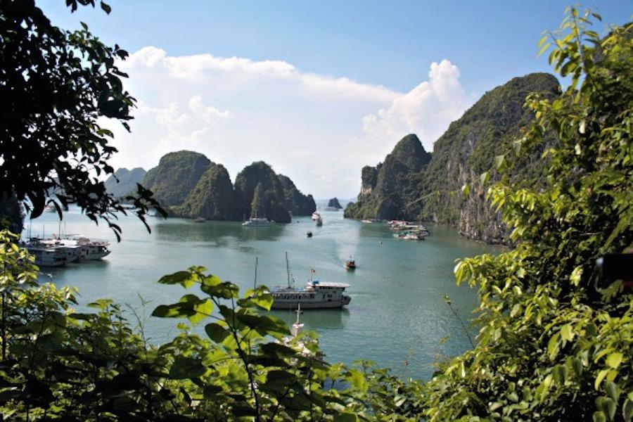 Bù lại, tôi có thể leo lên nhưng núi đá vôi để chiêm ngưỡng toàn cảnh vịnh Hạ Long