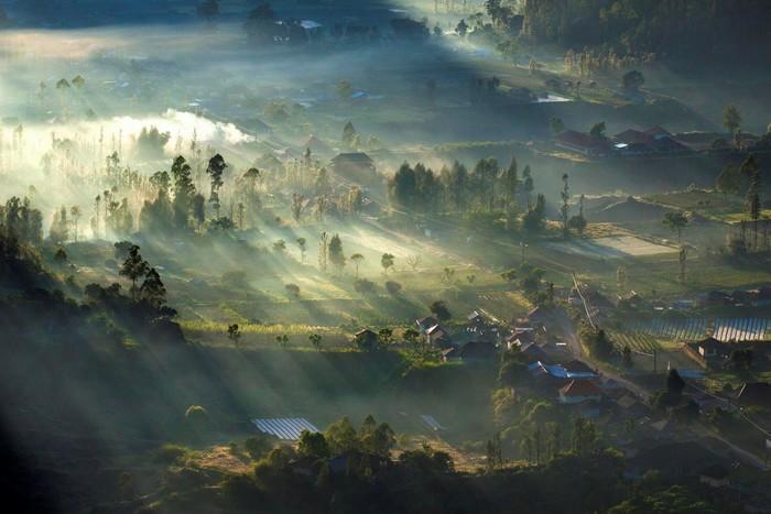 Lại có lúc Bali ngập tràn trong sương rừng mờ ảo