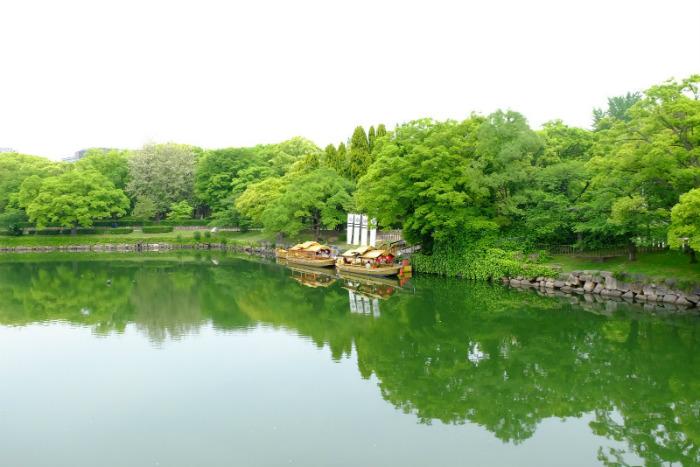Sông Okawa thơ mộng giữa ngày thường