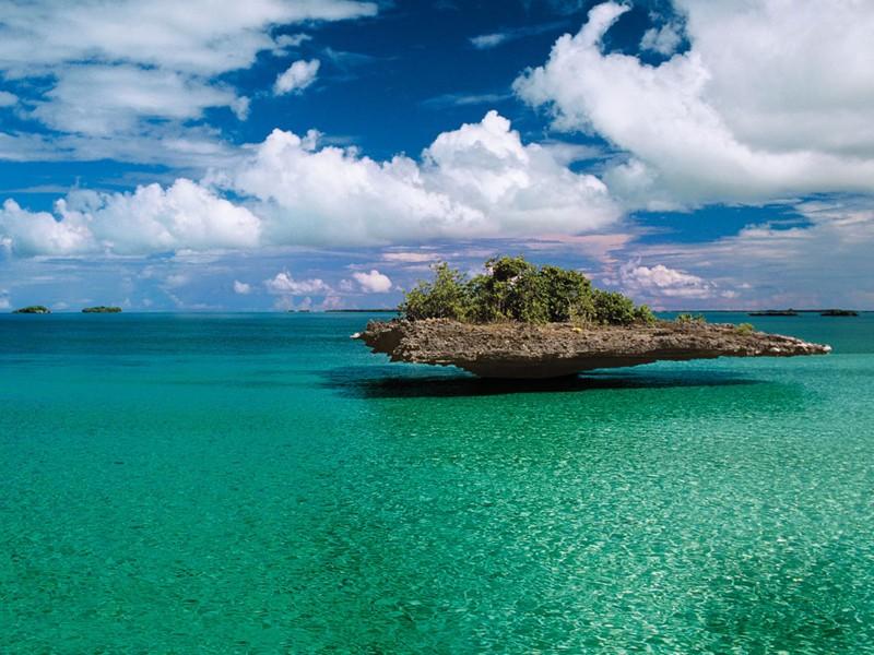Tuyệt đẹp Aldabra