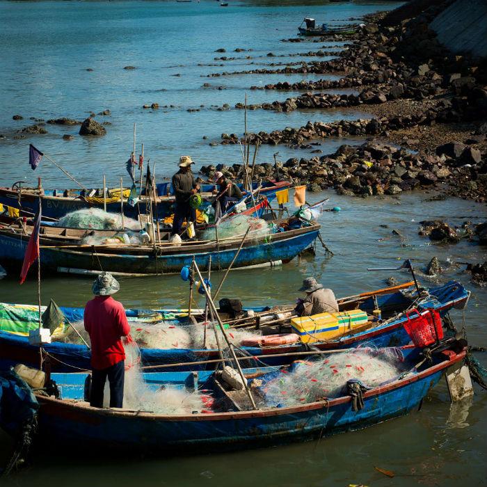 Ngư dân đánh cá trên những chiếc thuyền nhỏ