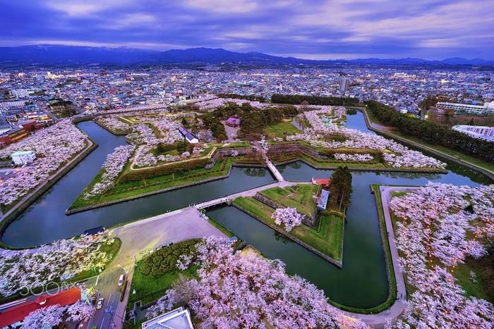 Du lịch đến thành phố cảng Hakodate, Nhật Bản – thưởng thức món Mực nhảy độc đáo