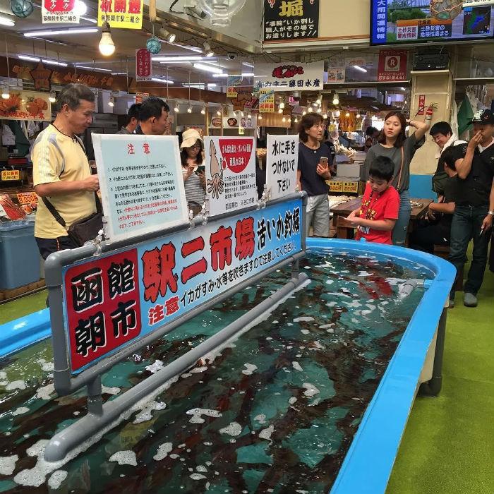 Chợ sớm Hakodate với những bể chứa mực sống