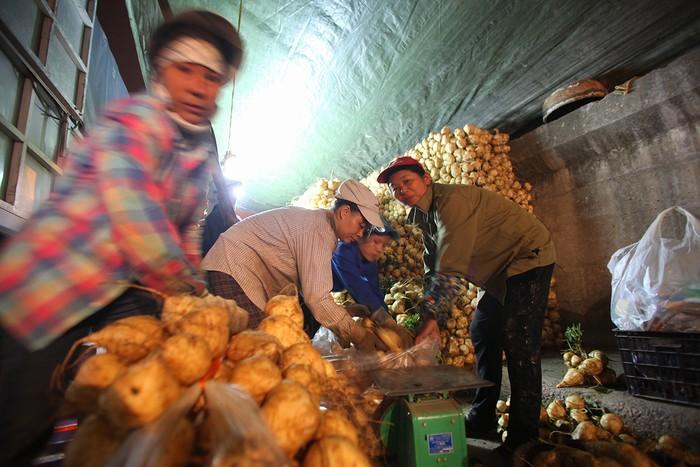 Người bán hàng tại chợ Long Biên đến từ các tỉnh giáp Hà Nội như: Bắc Giang, Bắc Ninh, Hà Nam, Phú Thọ…và cả một số huyện ngoại thành như: Gia Lâm, Thanh Trì, Đông Anh, Mỹ Đức, Chương Mỹ…