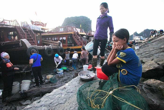 Nguyễn Thị Trà, 12 tuổi (Hà Nam) đang trong thời gian nghỉ hè nên theo mẹ tới Vân Đồn, Quảng Ninh để buôn hải sản.
