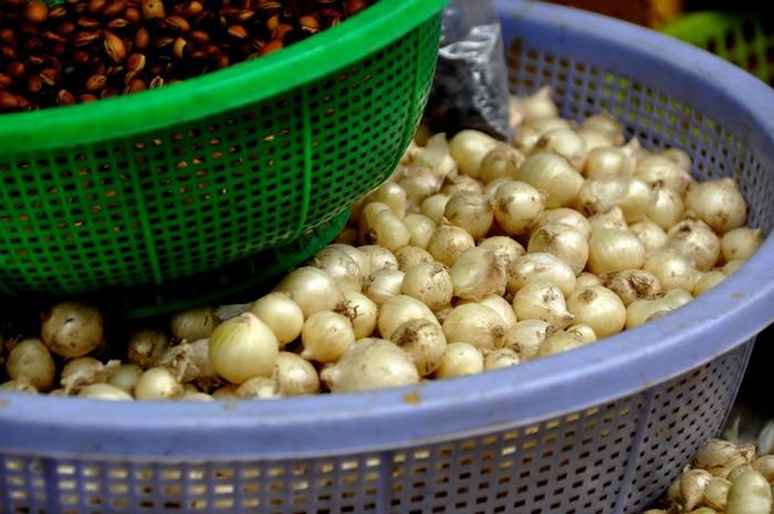 Củ nén hay củ ném theo các gọi của người Huế thuộc họ hành, tỏi là loại củ được nhiều người chọn mua bởi vị hương thơm hơn tỏi. Đây là loại nguyên liệu chế biến thức ăn không thể thiếu đối với ẩm thực miền Trung.