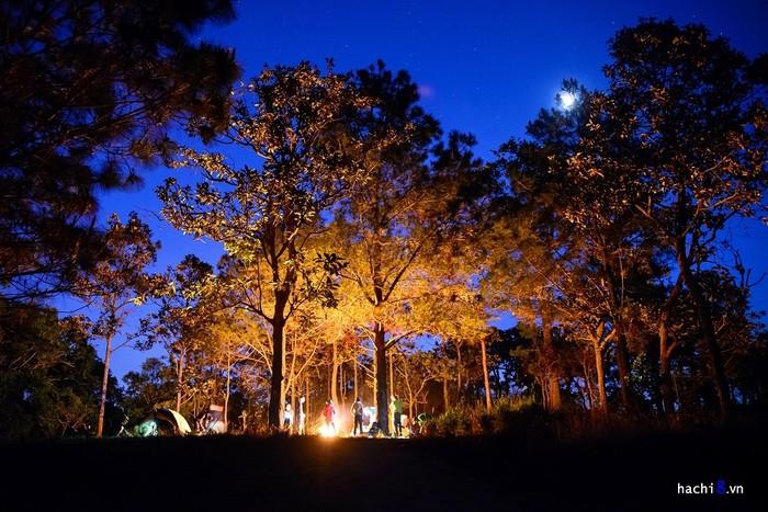 Phía Tà Năng (Lâm Đồng) chủ yếu là rừng thông với khí hậu ôn hòa hơn. Tuy nhiên thông chứa tinh dầu nên dễ bắt lửa và cháy âm ỉ, các nhóm đi cần cẩn trọng trong việc đốt và dập lửa khi di chuyển.