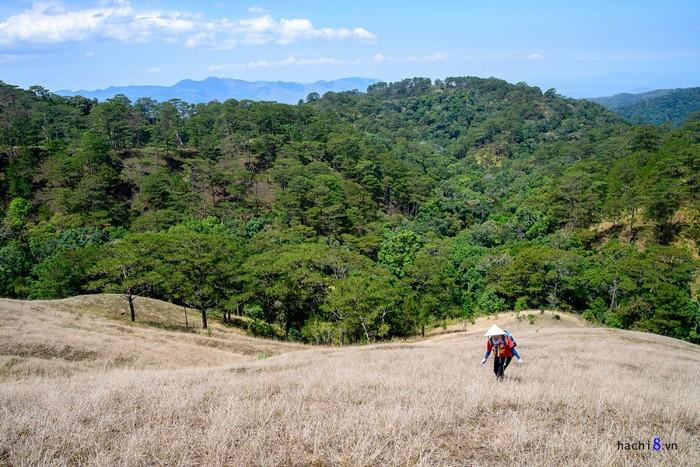 Cung đường có địa hình đa dạng nên bạn sẽ phải băng qua rừng, núi đồi trùng điệp. Những đồi cỏ dập dờn trong gió, có lúc thấy rất nhiều đàn bướm bay khiến khung cảnh quyến rũ đến mê lòng.