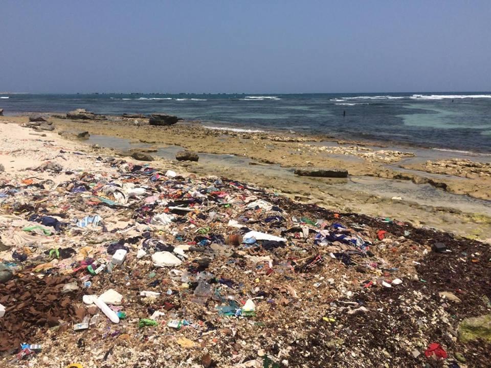 Jason cho biết ở Australia, trẻ em được dạy về tầm quan trọng của môi trường, đặc biệt là các dòng sông và đại dương.