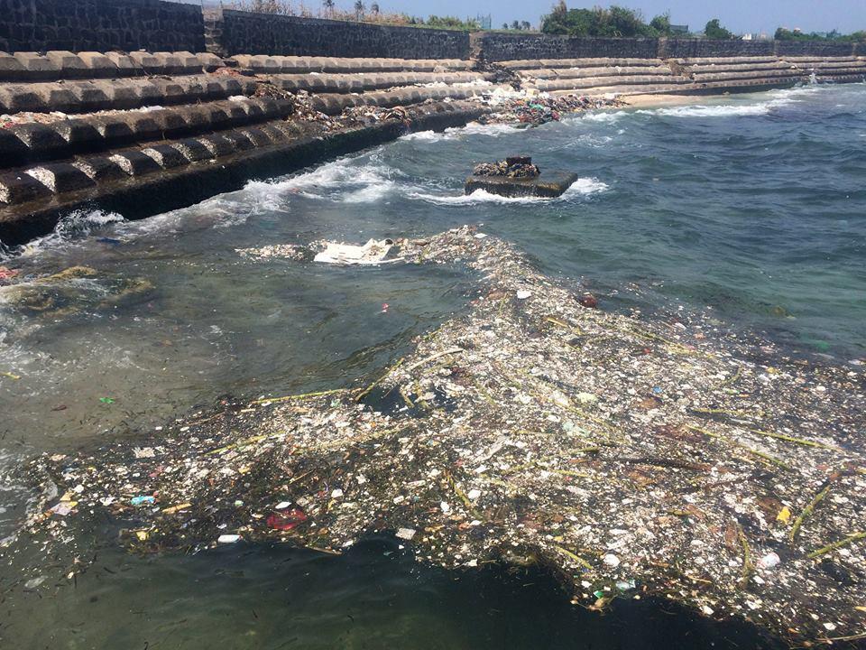 Tôi rất yêu Việt Nam và con người ở đây nhưng vấn đề rác thải cần phải được giải quyết, không chỉ riêng ở Lý Sơn. Tôi không biết phải làm cách nào nhưng tôi biết chắc chắn rằng chúng ta phải bắt đầu từ việc giáo dục về hậu quả của ô nhiễm môi trường. Đại dương không phải của riêng ai và chúng ta phải chung tay bảo vệ nó
