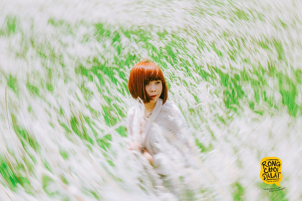 Giới trẻ thỏa thích sống ảo với đồi cỏ tranh tựa tuyết trắng mùa đông