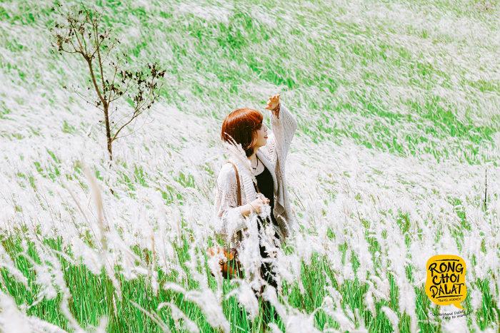 Thả hồn phiêu lãng giữa đồi cỏ đẹp ngỡ ngàng trong những ngày đầu hạ