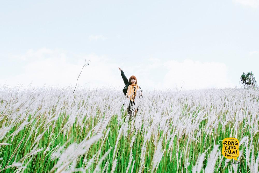 Đồi cỏ tranh xã Đạ Sar - nơi tạo ra những bức ảnh ảo diệu, đầy sức hút mê hoặc lòng người
