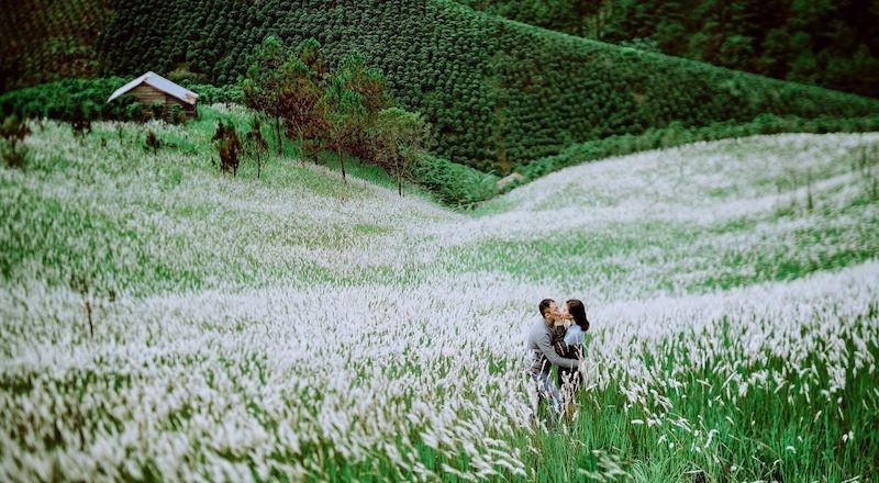 Tận hưởng những khoảnh khắc lãng mạn giữa cảnh sắc đẹp huyền ảo, nên thơ ở đồi cỏ tranh