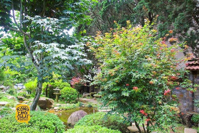 Khu vườn xinh đẹp của Zen Garden Coffee sẽ khiến bạn yêu thích từ cái nhìn đầu tiên