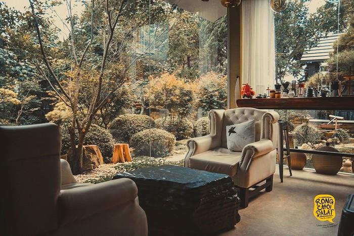 Chiêm ngưỡng rừng lá phong tuyệt đẹp qua những ô cửa kính trong veo