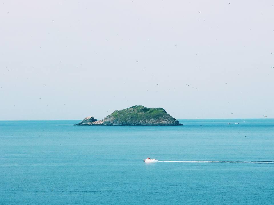 Bình Định vốn nổi tiếng với nhiều vùng biển đẹp