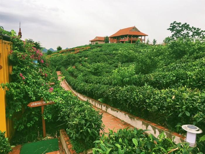 Khu nghỉ dưỡng Arena Village