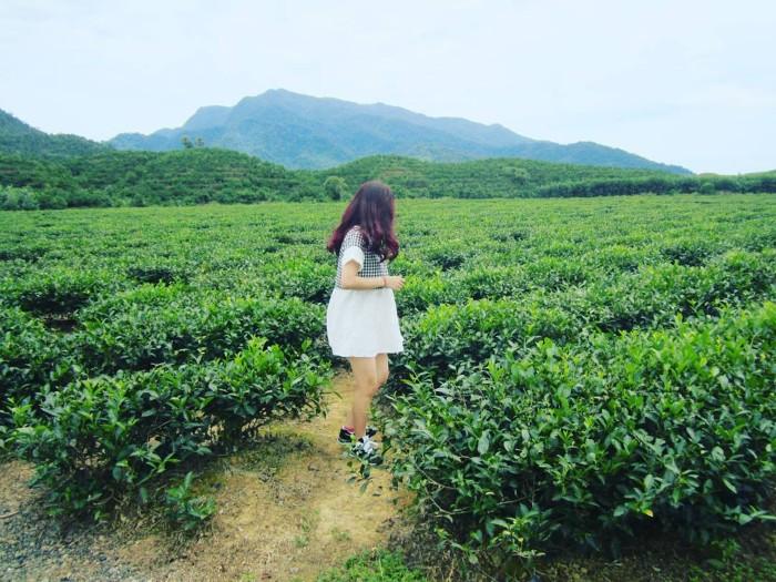 Thả mình vào không gian ngọt ngào ở Đông Giang - Ảnh: @nhule_v